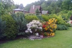 vzorová výsadba - plot v květu (10)